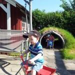 Peters storebror Martin og Malthe cykler i haven