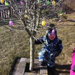 Påskeæg på træet i haven