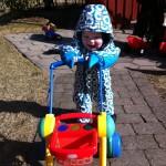 Sigurd på gåtur i haven:)