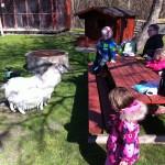 Grønærteby besøg